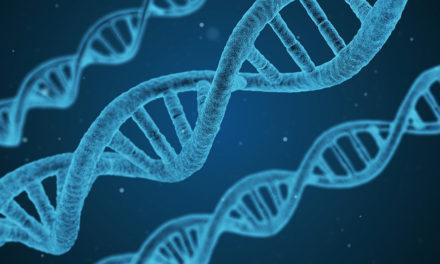 Epigenetyka – nowe narzędzie hodowcy drobiu