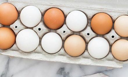 Brak różnic między jajami zróżnych systemów chowu