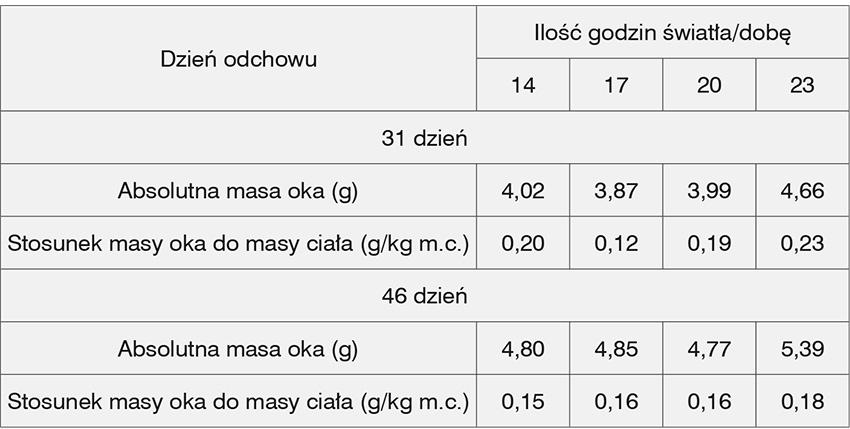 Wysoka masa oka ukurcząt brojlerów jest konsekwencją źle dobranego programu świetlnego (nadmierna ilość światła) (Schwean-Lardner, 2012; Wężyk iGilewski 2014)
