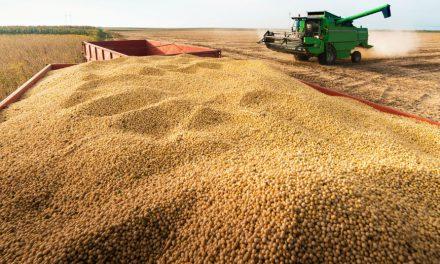 Alternatywne źródła białka wżywieniu drobiu