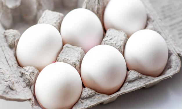Niesłuszne oskarżenia wobec producentów jaj